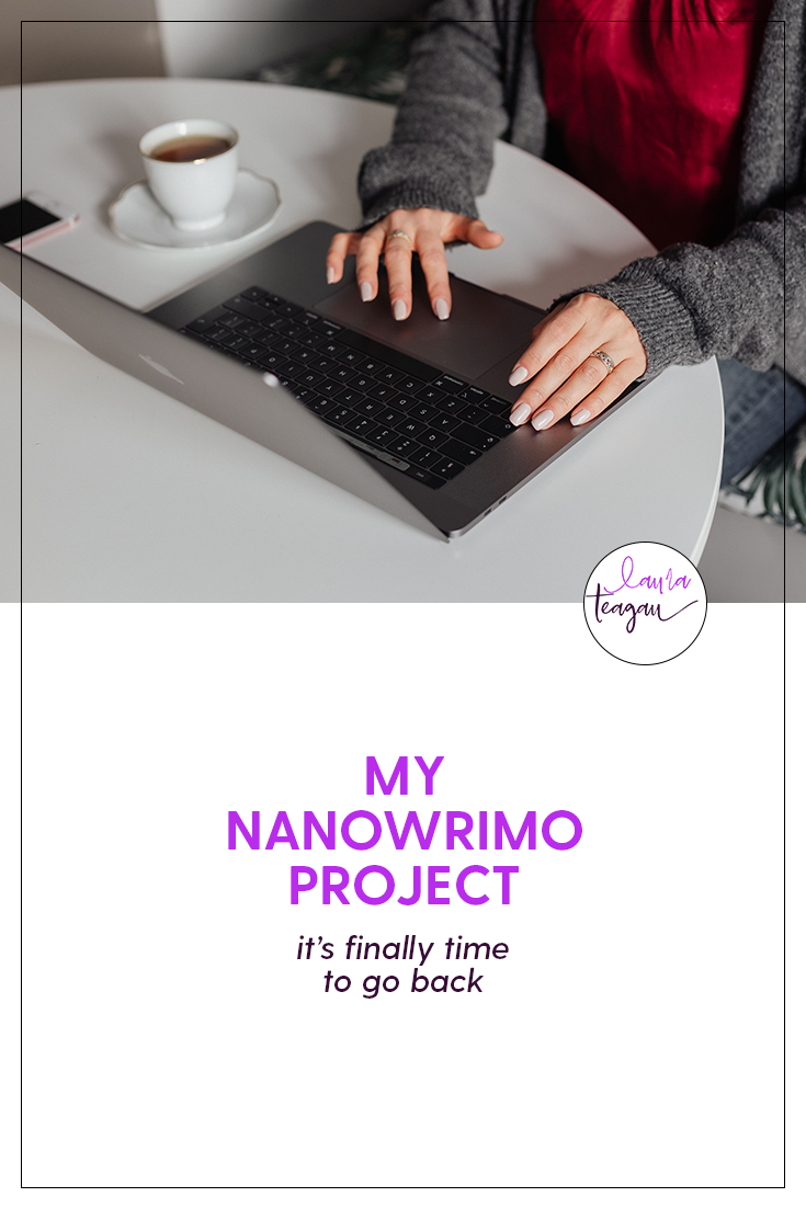My NaNoWriMo Project